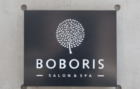 BOBORIS