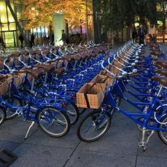 Copenhagen city bike tour User Photo