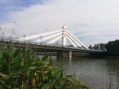 西施大橋用戶圖片