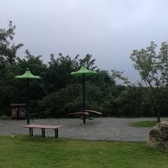 Haiqu Park User Photo
