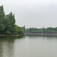 北湖公園のユーザー投稿写真
