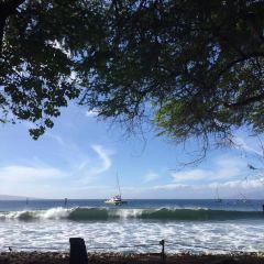 馬尼尼歐瓦麗海灘用戶圖片