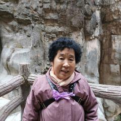 퉁톈샤관광구 여행 사진