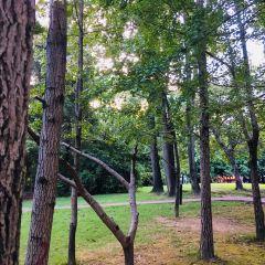 온천공원 여행 사진