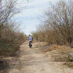 Rincon Beach Park User Photo