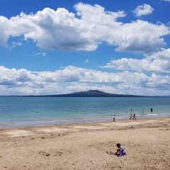 Piha Beach User Photo