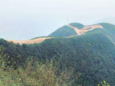 Mount Fuzi