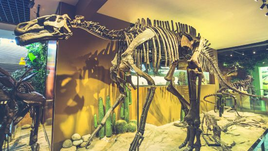史前生命博物館