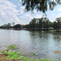 Louisiana State University User Photo