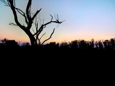 基拉德·加那國家公園