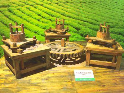 Guizhou Tea Culture Ecological Museum