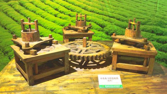 Guizhou Tea Culture Ecological Museum