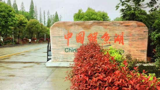 있는 중국 악어 호수