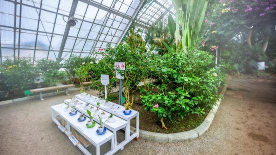 函館市熱帶植物園