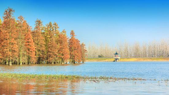 The Zhuzhen Zhima Mountain Range
