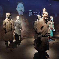 Shaanxi History Museum User Photo