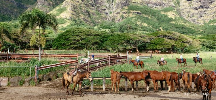Kualoa Ranch2