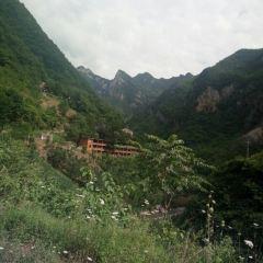 魚泉山風景區用戶圖片