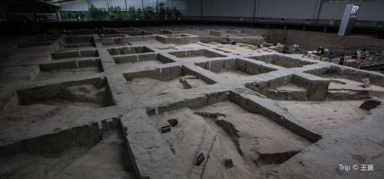 Jinsha Site Museum3