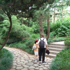 환추이러우공원 여행 사진