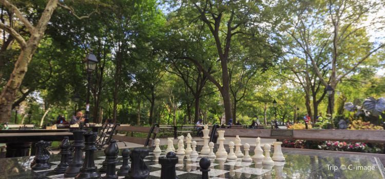 Washington Square Park3