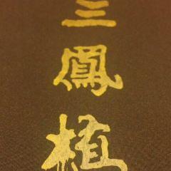 三鳳酒家用戶圖片