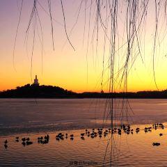 北海公園用戶圖片