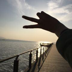 龜山濕地公園用戶圖片