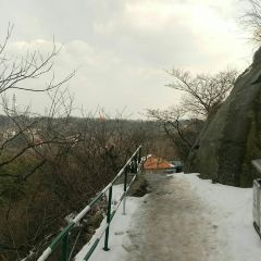 수탉 산 여행 사진