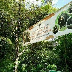 婆羅洲太陽熊保育中心用戶圖片