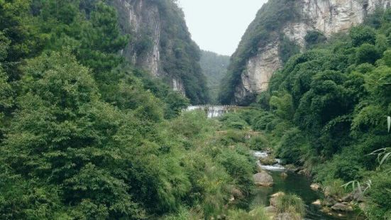 Guodiqing