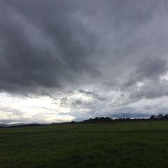 Culloden Battlefield用戶圖片