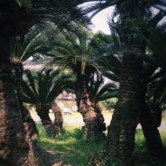 장신위섬 여행 사진