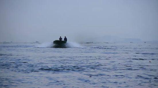 南灣猴島快艇體驗