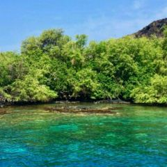 Kealakekua Bay User Photo