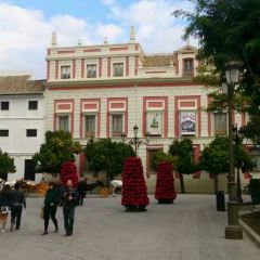 Santa Cruz User Photo