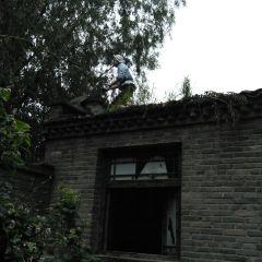 白洋淀雁翎隊紀念館用戶圖片