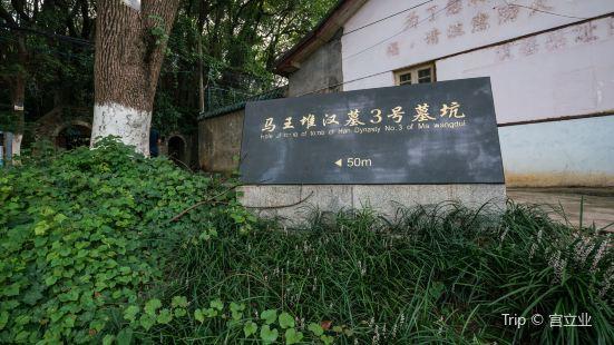 馬王堆漢墓