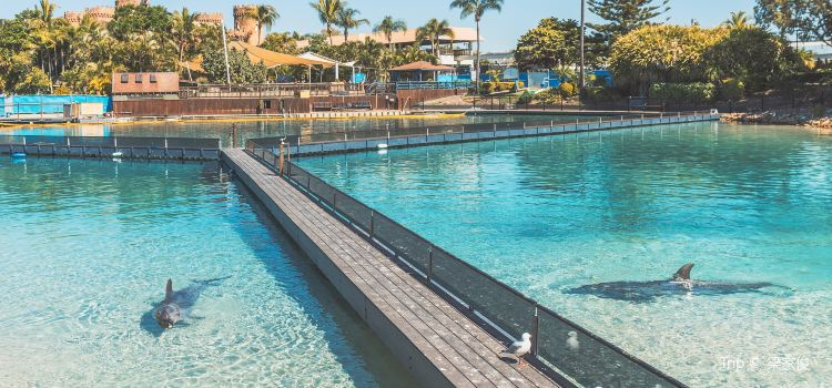 Gold Coast Sea World2