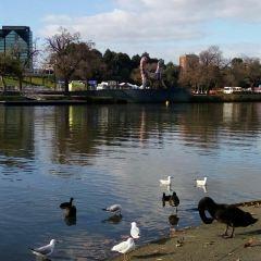 Yarra River User Photo