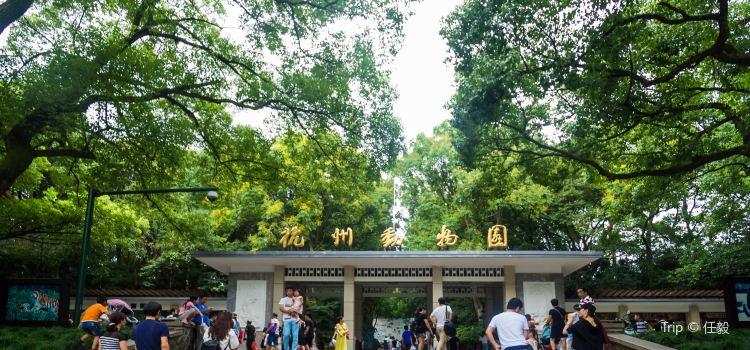 杭州動物園1