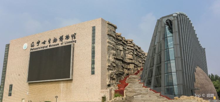 Paleontological Museum of Liaoning1