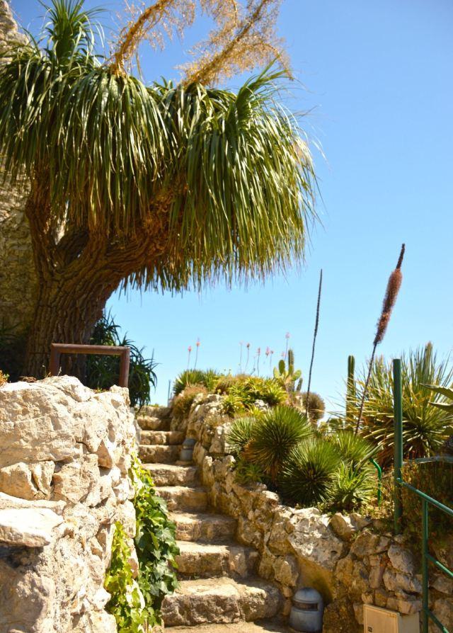 Jardin Exotique D Eze Attractions 张老师 Alpes Maritimes Travel