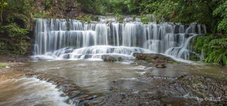 구룡 폭포군 국가 삼림공원3