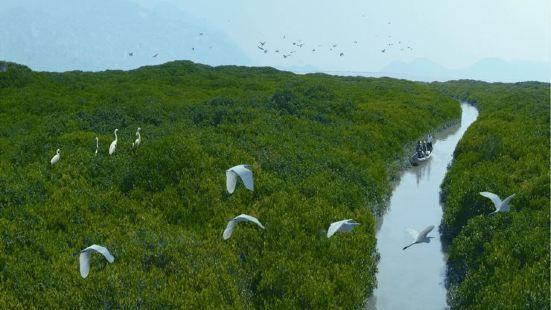 竹塔紅樹林自然保護區
