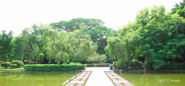 Huangpu Park2