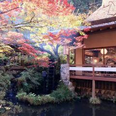 Seimonbarai用戶圖片