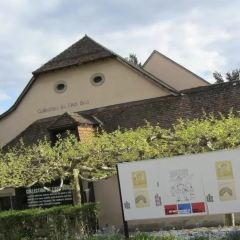 原生藝術館用戶圖片