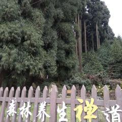어메이산 칠리핑 온천 여행 사진