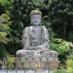 清水岩廟用戶圖片